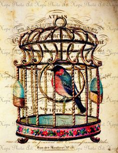 Vintage Birdcage French Paper 85x11 Digital by HopePhotoArt, $3.49