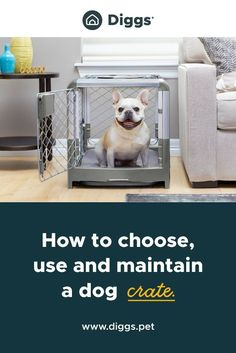A dog crate is an essential product for any pet parent. Unfortunately, pet parents don't always know enough about dog crates to select, use and maintain them properly. Typical questions we get: What's the right size?How big should a dog crate be? How do I introduce my new puppy to a crate? Are there any risks to be aware of? How do I collapse a dog crate? Don't worry, we will answer these questions and many more in the article below: #dogcratefurniture #dogcrate #dogcrateideas