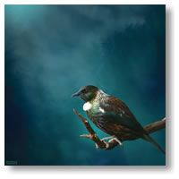 Tui Tane -med by Julian Hindson - prints Artistic Images, Pics, Canvas, Image, Art, Poster, Prints