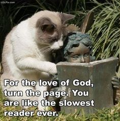 hahaha, srsly!  how I feel everytime I'm reading along with someone!