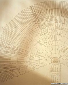 Framed Family Tree - Heritage gift that can be passed on to others as well. A family tree can be a beautiful work of art as well as an informative genealogical record. This fan chart is a simple project that yields striking results. Genealogy Chart, Genealogy Research, Family Genealogy, Genealogy Forms, Make A Family Tree, Family Tree Chart, Family Trees, Photobooth Ideas, Photowall Ideas