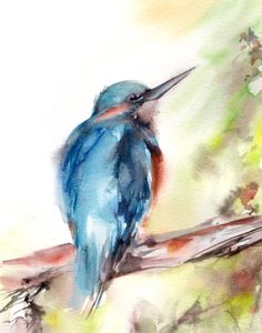 Kingfisher Bird Watercolor Painting Art Print by CanotStopPrints