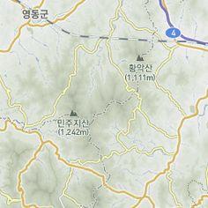 Daum 지도