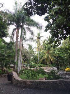 Jardins de Los Altos de Chávon