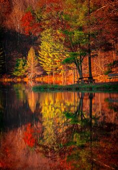 lifeisverybeautiful: Autumn at the park by Chad Briesemeister & Taken at Clear lake park, Wisconsin The post lifeisverybeautiful: Autumn at the park by Chad Briesemeister & Taken at Clear & autumn scenery appeared first on Trendy. Fall Pictures, Nature Pictures, All Nature, Amazing Nature, Beautiful World, Beautiful Images, Autumn Scenes, Autumn Photography, Belle Photo