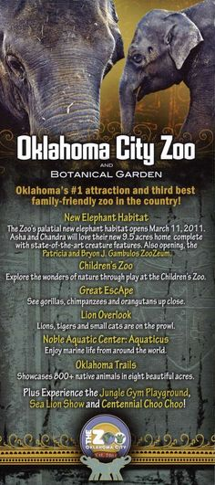 Oklahoma City Zoo! It really is the best I have been to yet!