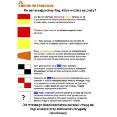 Co oznaczają flagi na plaży? #popolsku