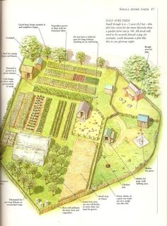 A Half-Acre Farm- a page from my favorite book, Country Life: A Handbook for Realists and Dreamers by Paul Heiney: