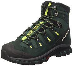 Salomon Men's Quest 4D 2 GTX Hiking Boot (13 D(M) US, Bis...