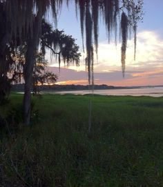 #Sunset at #Myakka River State Park