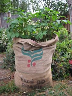 Grow potatoes in a sack, good space saver, and cheap too!