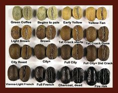 10 things you may not know about coffee. I'm a coffee roaster and barista. If you guys like this, I'll do an AMA. - Imgur #CoffeeBeans #CoffeeRoaster