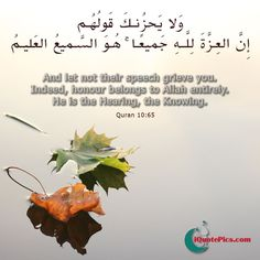 Surah Yunus verse number 65. Don't let their speech sadden you! Indeed all honour belongs to Allah entirely. Beautiful picture with this verse to download.