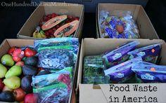 Food Waste In America, Free Food, Food Waste, Foraging