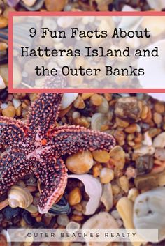 9 Fun Facts About Hatteras Island and the Outer Banks - Outer Beaches Realty…