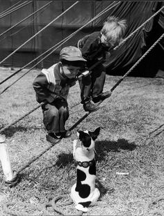 Little boys outside circus tent playing with a dog. (Nina Leen—Time & Life Pictures/Getty Images) See more: http://ti.me/Ot4Kbp