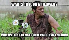 look at the flowers daryl look at the flowers