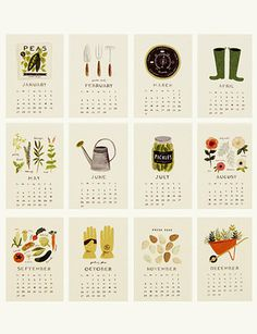 2013 Calendar, Garden Illustrations