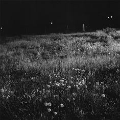"Robert Adams, ""Longmont, Colorado"", Summer nights series, 1976"