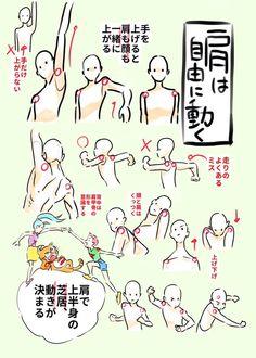 """アニメ私塾さんはTwitterを使っています: """"◎肩は自由に動く ・手を上げると肩も顔も一緒に上がる ・上半身の動きは肩で決まる ・走り手だけ振ることはない。むしろ肩に連動して手が動くくらいに考える ・肩の可動域=躍動感 ・自分の体で肩の動きを確認してみよう https://t.co/zoqfhKfE3s"""""""