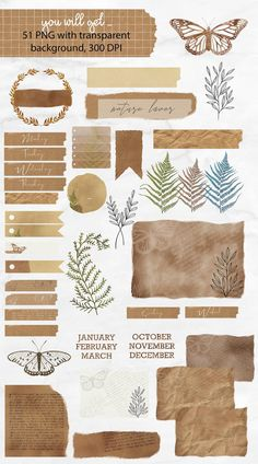 Junk Journal Clipart Collection Old vintage Paper Fern Bullet Journal Art, Bullet Journal Ideas Pages, Junk Journal, Old Paper, Vintage Paper, Etsy Vintage, Journal Stickers, Planner Stickers, Printable Stickers