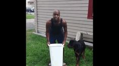 Freakin' HILARIOUS!!! Can't stop laughing! A Compilation Of People F'ing Up The Ice Bucket Challenge