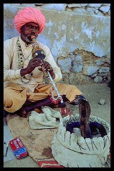 Snake Charmer  Pushkar, India,