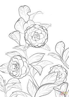 https://www.google.com/search?client=firefox-b-ab&biw=1771&bih=1208&tbm=isch&sa=1&ei=e1keW_78JsjbwAKj8aKICw&q=japanese+style%2C+simple+flower+line+drawings&oq=japanese+style%2C+simple+flower+line+drawings&gs_l=img.3...119284.127009.0.127768.10.10.0.0.0.0.102.675.9j1.10.0....0...1c.1.64.img..0.0.0....0.KlEZw295yAA#imgrc=Eb4H7g0Hx-XdsM: