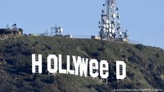 Hollywood' oldu 'Hollyweed
