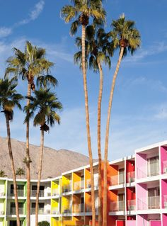 We dream of pastel getaways in Palm Springs.