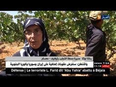 أخبار الجزائر العميقة ليوم 25 ماي 2017 | lodynt.com |لودي نت فيديو شير