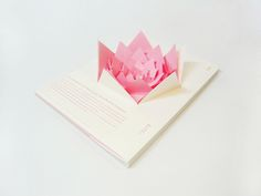 Pink paper book explosion!