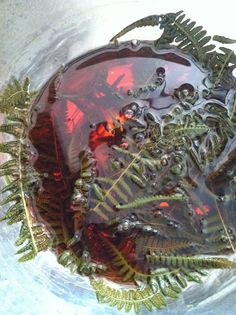 fern dye bath - natural dyes to color your homespun yarn