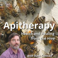 Apitherapy Course Health and Healing From the Hive with Ross Conrad Organic Beekeeping #beekeeping