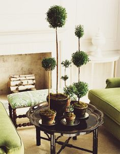 {decor inspiration | in the garden : a tale of topiaries} by {this is glamorous}, via Flickr