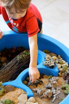 Beautifully arranged Reptile Small World and Sensory Play from Twodaloo!!