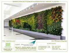 Green over grey, landscape design and art for walls...amazing...BHM International Airport, Alabama, USA, Green over Grey Living Walls