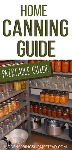 Canning Pickles, Canning Tips, Home Canning, Canning Recipes, Canning Food Preservation, Preserving Food, Canning Vegetables, Pressure Canning, Homemade Dog Food
