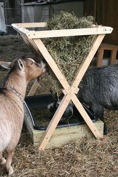 53 Best Goat Shelter Ideas Images Farmhouse Goat Barn Baby Goats