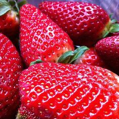 Strawberries! / Fresas!