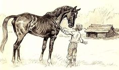 1952 `Black Beauty' Paul Brown Equestrian Art, 1st Ed - Anna Sewell, Horses, Collector's Vintage