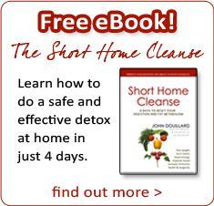 Free 4-Day Short Home Cleanse: John Douillard's ayruvedic split moon dal recipe
