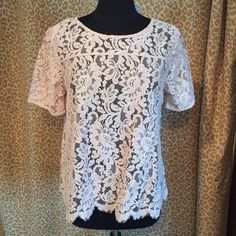 NWOT loft lace top This is a re-posh, brand new without tags, beautiful but just too big for me LOFT Tops Blouses