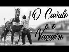 A HISTORIA DO CAVALO - Motivação & Reflexão Yorozuya #06 - YouTube