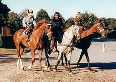 Secretariat and Riva Ridge with stable pony Billy Silver  (Hangin' With Haskin | Haskin Photo Blog: Journey with the Greats)