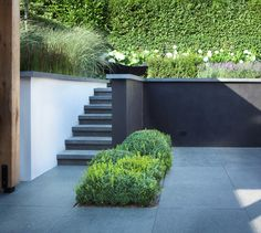 Contrasting wall colours create illusion of width. The steps here are located off to the side to maximise the useable space on the lower terrace - these would be easy to secure with a safety gate. I would want more planting on the lower level to reduce the dominance of the dark grey wall