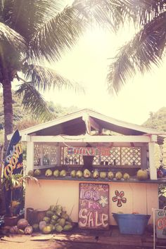 North Shore, Oahu, Hawaii. i would live in this pineapple shack. yes i would.