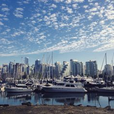 I vowed to return to Canada and that's what i'm doing. Vancouver I am coming for you and I can't wait to see what you have to offer. San Francisco Skyline, Vancouver, New York Skyline, Places To Visit, Canada, Travel, Viajes, Traveling, Places Worth Visiting