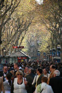 La Rambla de les Flors, Barcelona- One of my favorite places in the world.