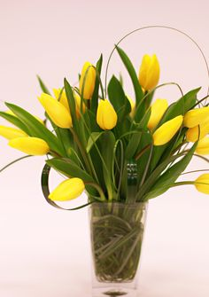 Walking on Sunshine - All Tulip Arrangement - Yellow Flowers - Simple and classy - Birthday arrangement - Anniversary flowers - Special occasion flowers - Knoxville TN Florist - Lisa Foster Floral Design - www.lisafosterdesign.com